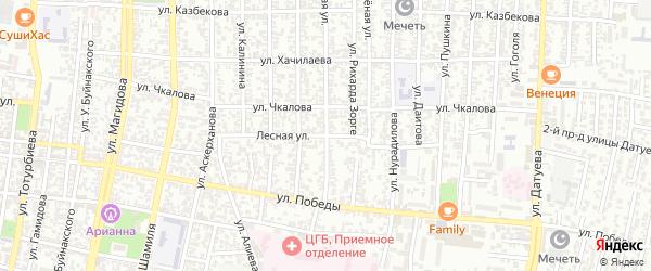 Лесная улица на карте Хасавюрта с номерами домов