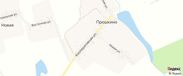 Кооперативная улица на карте деревни Прошкино с номерами домов