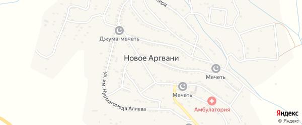 Улица Им Адильгерея Магомедтагирова на карте села Ново-Аргвани с номерами домов