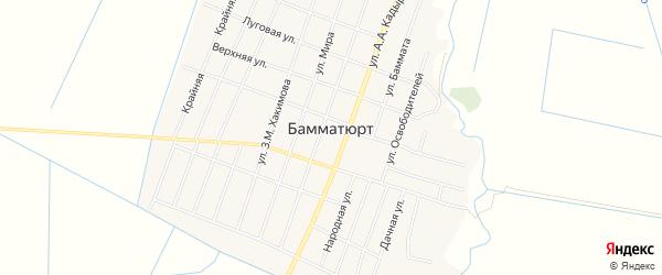 Карта села Бамматюрта в Дагестане с улицами и номерами домов