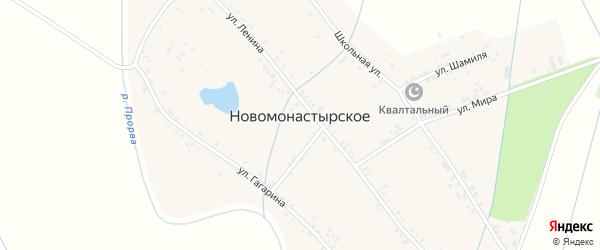 Школьная улица на карте Новомонастырского села с номерами домов