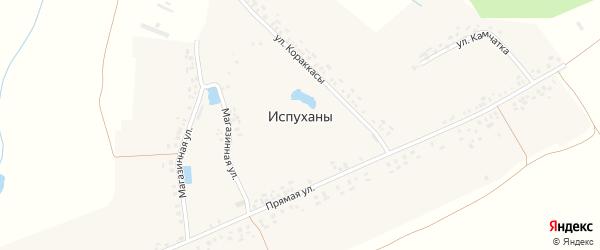 Магазинная улица на карте деревни Испуханы с номерами домов