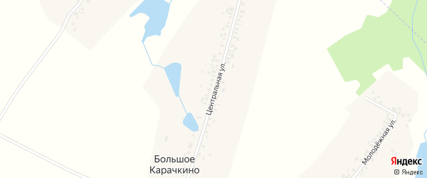 Центральная улица на карте села Большое Карачкино с номерами домов