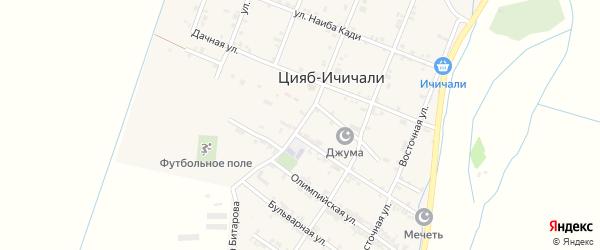 Улица Битара Битарова на карте села Цияба Ичичали с номерами домов