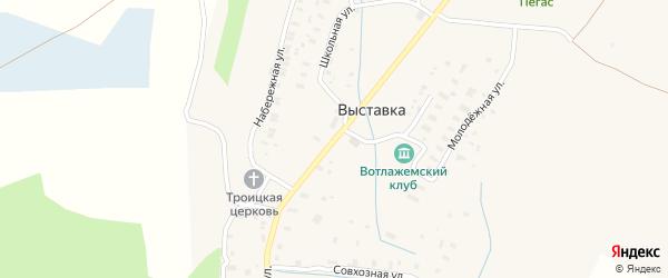 Центральная улица на карте деревни Выставки с номерами домов