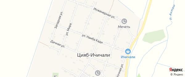 Улица Наиба Кади на карте села Цияба Ичичали с номерами домов