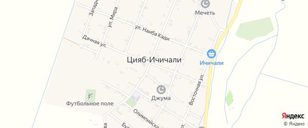 Западная улица на карте села Цияба Ичичали с номерами домов