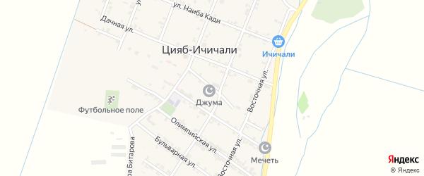 Народная улица на карте села Цияба Ичичали с номерами домов