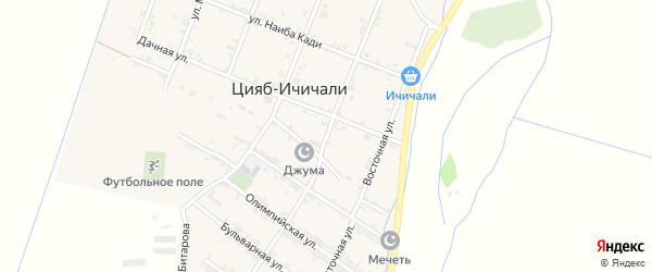 Улица Назирбега Исмаилгаджиева на карте села Цияба Ичичали с номерами домов