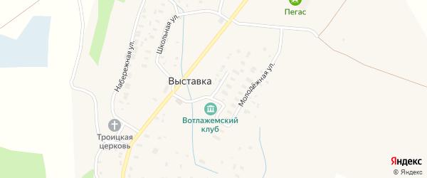 Молодежная улица на карте деревни Выставки с номерами домов
