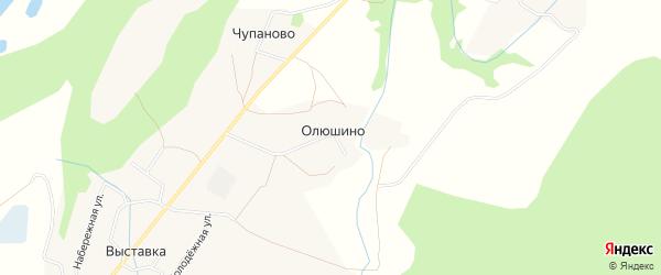 Карта деревни Олюшино в Архангельской области с улицами и номерами домов
