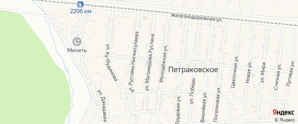 Виноградная улица на карте Петраковского села с номерами домов