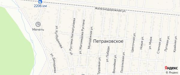 Молодежная улица на карте Петраковского села с номерами домов