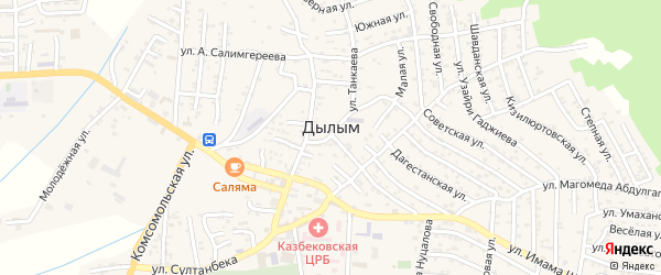 Улица М-Салимгереева на карте села Дылыма с номерами домов