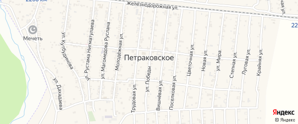 Вишневая улица на карте Петраковского села с номерами домов