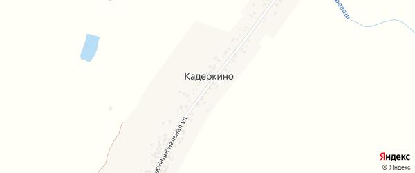 Интернациональная улица на карте деревни Кадеркино с номерами домов