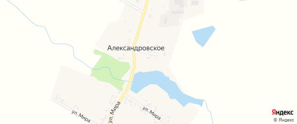Улица Мира на карте Александровского села с номерами домов
