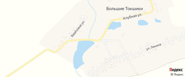 Школьная улица на карте деревни Большие Токшики с номерами домов