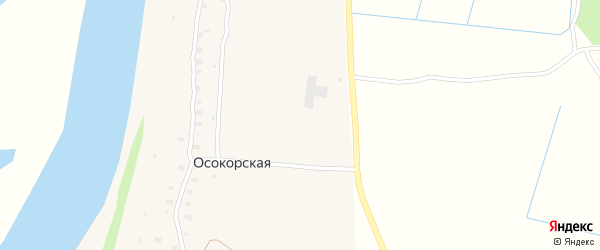 Зеленая улица на карте садового товарищества Темпа с номерами домов