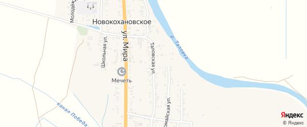 Таловская улица на карте Новокохановского села с номерами домов