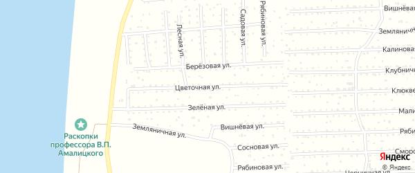 Цветочная улица на карте поселка СОТА Волны-1 с номерами домов