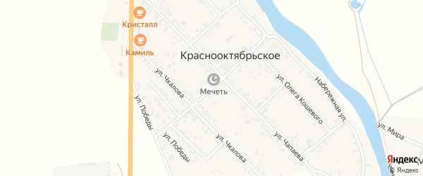 Центральная улица на карте Краснооктябрьского села с номерами домов