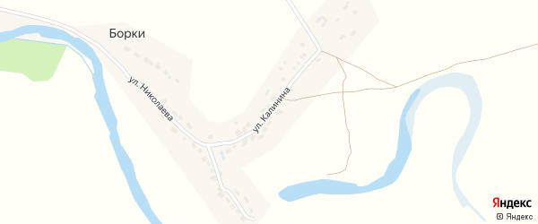 Улица Калинина на карте поселка Борки с номерами домов