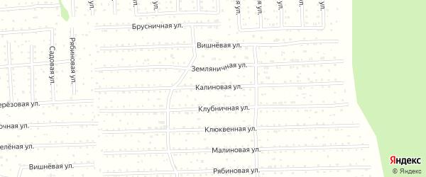 Рябиновая улица на карте поселка СОТА Малодвинского с номерами домов