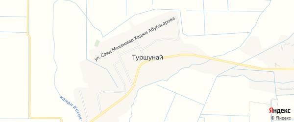 Карта села Туршуная в Дагестане с улицами и номерами домов
