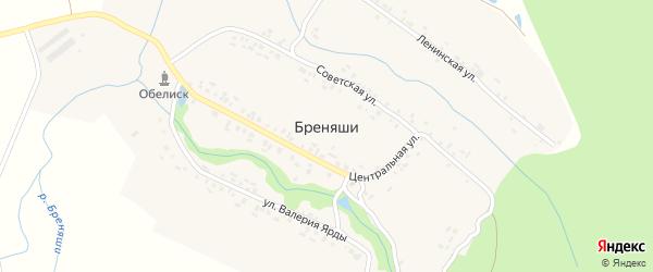 Центральная улица на карте деревни Бреняши с номерами домов