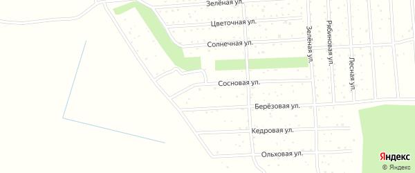 Березовая улица на карте садового некоммерческого товарищества СОТА Колоса с номерами домов