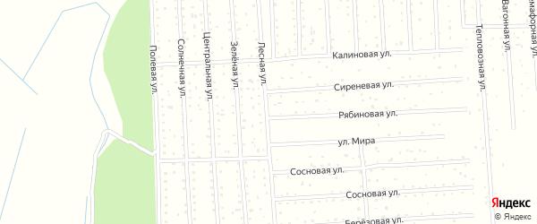 Лесная улица на карте садового некоммерческого товарищества СОТ Двинские Зори с номерами домов