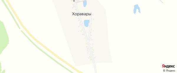Улица Заветы Ильича на карте деревни Хоравары с номерами домов