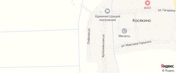 Озерная улица на карте села Косякино с номерами домов
