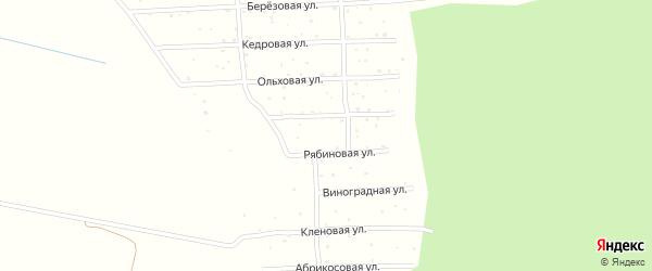 Виноградная улица на карте садового некоммерческого товарищества СОТА Колоса с номерами домов