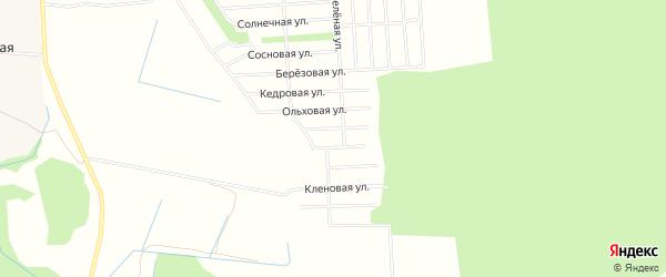 Карта садового некоммерческого товарищества СОТА Колоса в Архангельской области с улицами и номерами домов