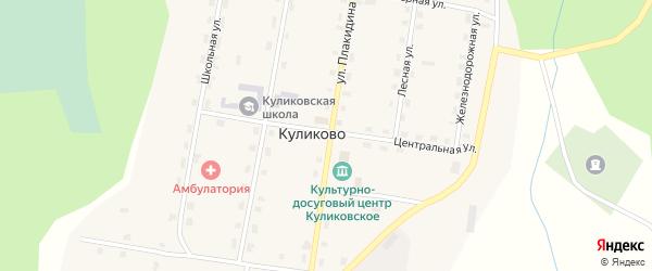 Центральная улица на карте поселка Куликово с номерами домов