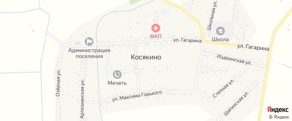 Короткий переулок на карте села Косякино с номерами домов