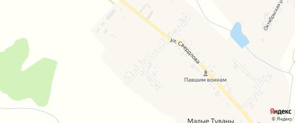 Молодежная улица на карте деревни Малые Туваны с номерами домов