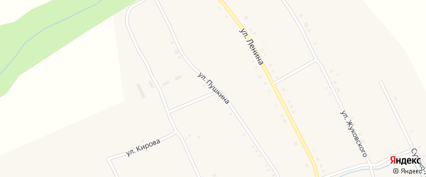 Улица Пушкина на карте села Иваньково-ленина с номерами домов