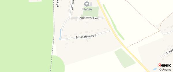 Молодежная улица на карте поселка Алтышево с номерами домов