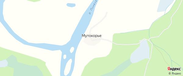 Карта деревни Мутокорья в Архангельской области с улицами и номерами домов