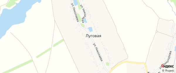 Улица Николаева на карте Луговой деревни с номерами домов