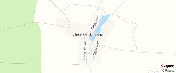 Садовая улица на карте деревни Лесные Шигали с номерами домов
