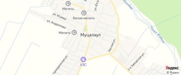 Карта села Муцалаула в Дагестане с улицами и номерами домов
