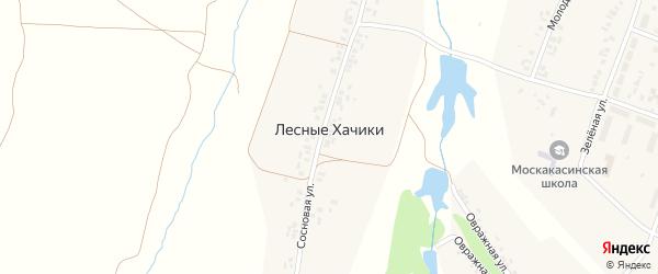 Сосновая улица на карте деревни Лесные Хачики с номерами домов
