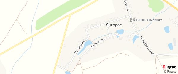 Нагорная улица на карте деревни Шора-Босая с номерами домов