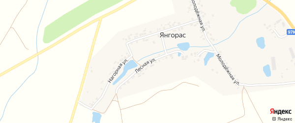 Лесная улица на карте деревни Янгораса с номерами домов