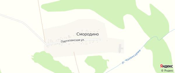Партизанская улица на карте деревни Смородино с номерами домов