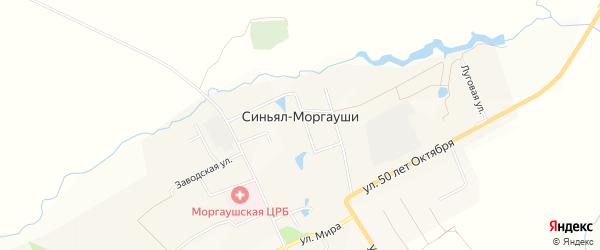 Карта деревни Синьяла-Моргауши в Чувашии с улицами и номерами домов